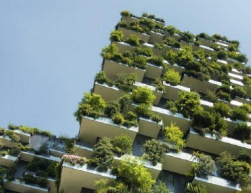 El próximo paso en la gestión empresarial del cambio climático. Riesgos y oportunidades