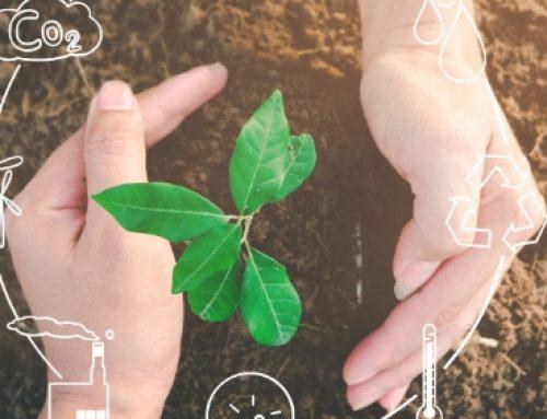 El impacto del Plan de acción para la economía circular en Europa y los retos futuros