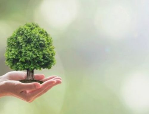 4 razones para un mayor compromiso empresarial con la sostenibilidad ambiental