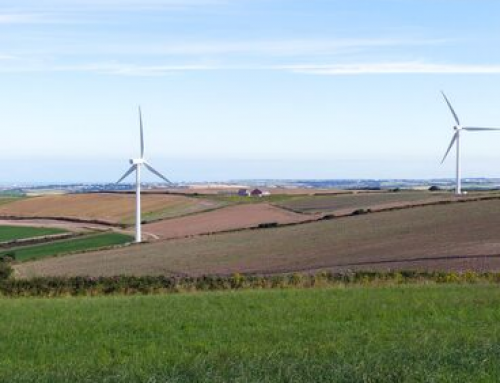 Europa y el liderazgo en sostenibilidad