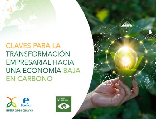Claves para la Transformación de una Economía baja en carbono