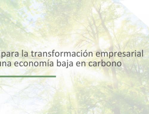 El Clúster de Cambio Climático de Forética presenta las seis claves para la transformación empresarial hacia una economía baja en carbono