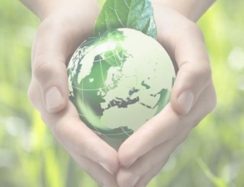 CESCE reduce su huella de carbono y se certifica con el triple sello calculo-reduzco-compenso