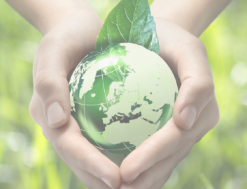Green Friday: los ciudadanos avanzan ante el reto del cambio climático y piden acción a empresas y administraciones