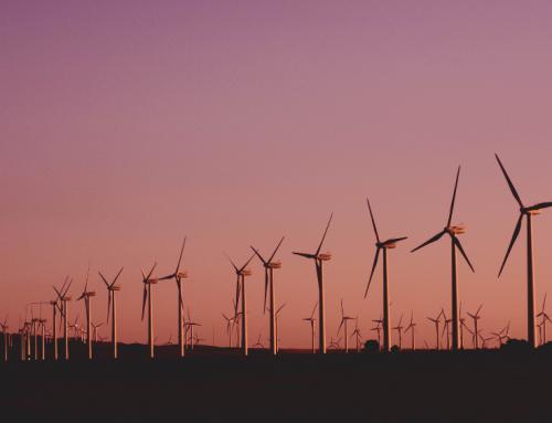 El papel de las energías renovables en la transición energética y los planes de recuperación